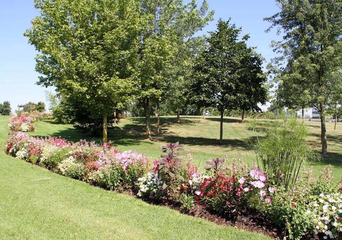 Fleurissemement concours des maisons fleuries saint for Jardin fleuri maison
